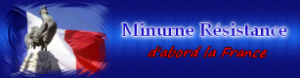 minurne-300x78